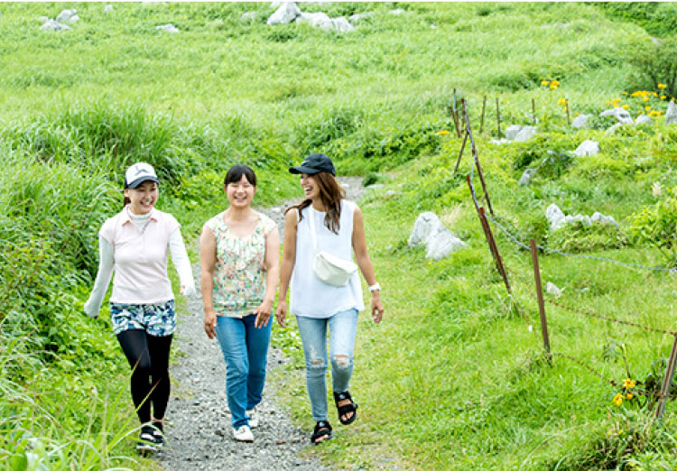 高原の遊歩道